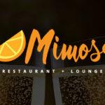 mimosa logo design